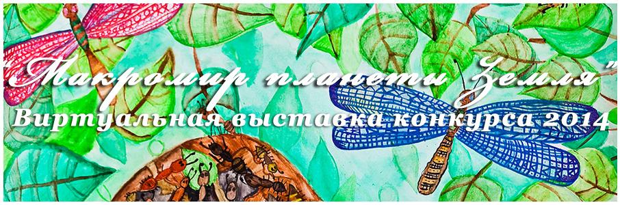 Семахина Яна (8 лет) «Жизнь муравейника» / 3 место в средней категории